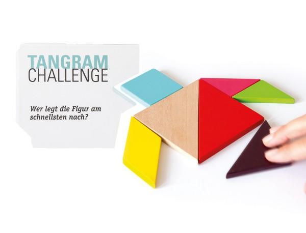 Tangram Chinesisches Legespiel 200 Vorlagekarten REMEMBER